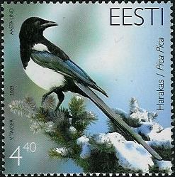 Ekster, Estland