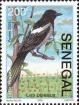 Senegal, 2006