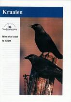 """""""Kraaien"""" brochure van Vogelbescherming Nederland"""