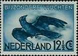 Zwarte kraai, Corvus corone corone